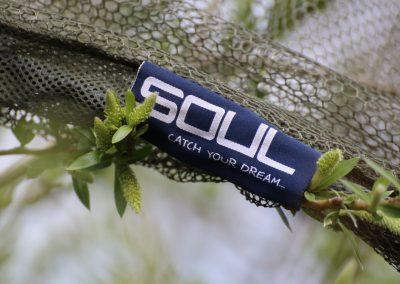 SOUL_net